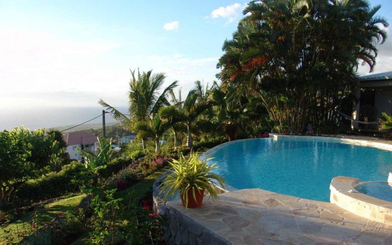 Aménagement jardin particulier aux Avirons : Vue Piscine